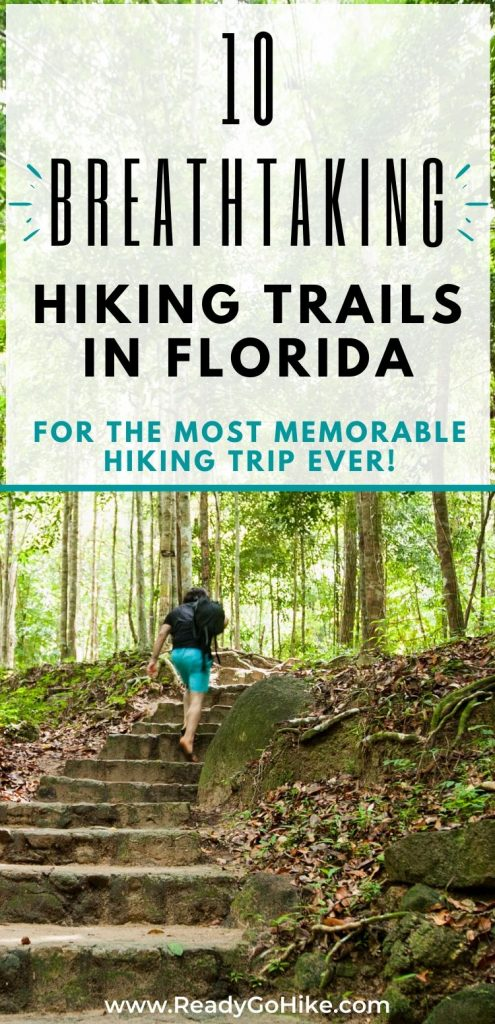 Rear view of man hiking in forest text overlay 10 Breathtaking Hiking Trails in Florida