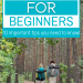 Pair of hikers walking through forest with text overlay Hiking for Beginners 10 Important Tips You Need to Know