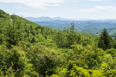 Mountain view in Grayson Highlands State Park
